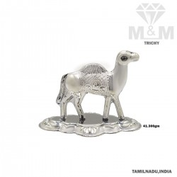 Charismatic Silver Camel...