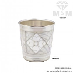 Memorable Silver Fancy Tumbler