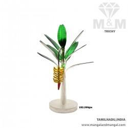 Mannerly Silver Banana Tree