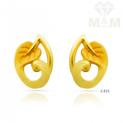 Handsome Gold Casting Earring