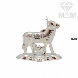 Splendid Silver Fancy Cow