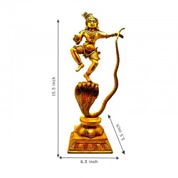 Shri Krishna Vigaraham